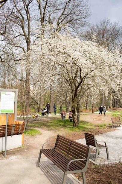 Ogród nad Sudołem - idealne miejsce na majówkowe spacery