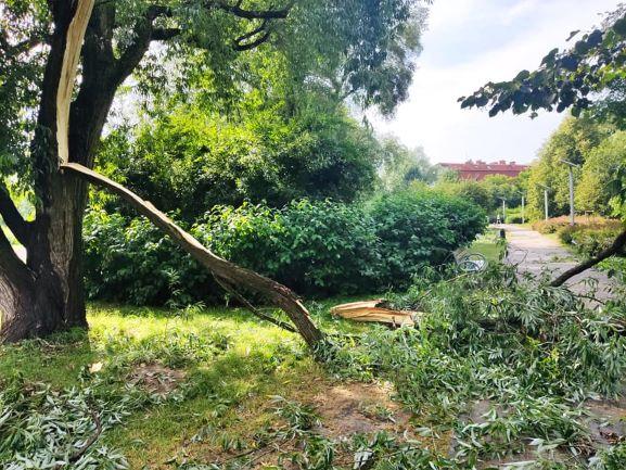 Park Zaczarowanej Dorożki - zniszczenia